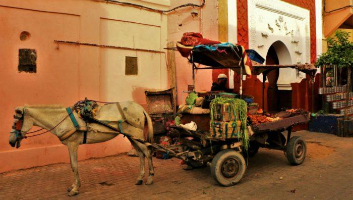 Marrakech, Morocco (Juan Antonio Segal CC by 2.0 https://www.flickr.com/photos/jafsegal/18606447896)