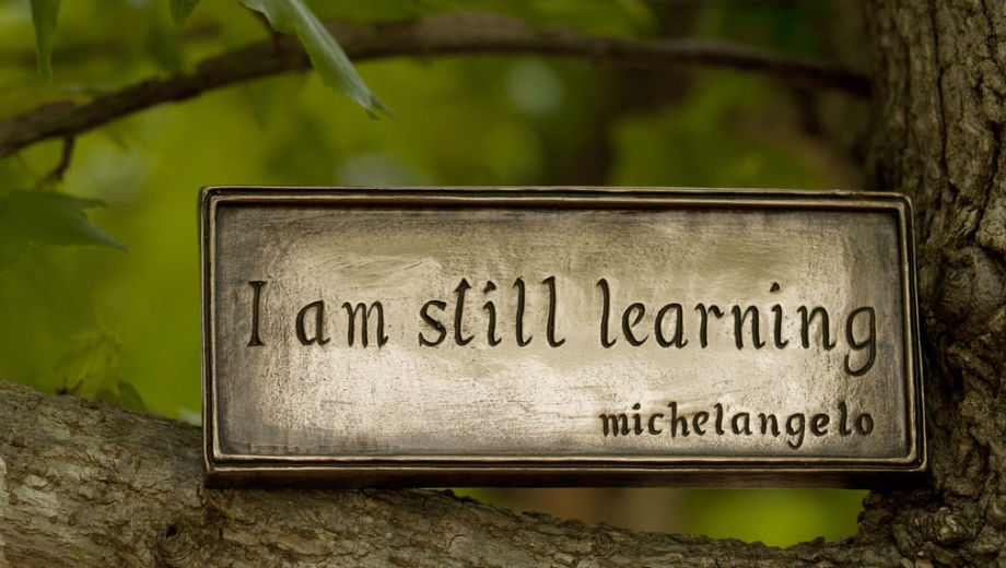 Learning (Image CC BY-NC 2.0 Anne Davis 773 /https://www.flickr.com/photos/anned/8700093610)