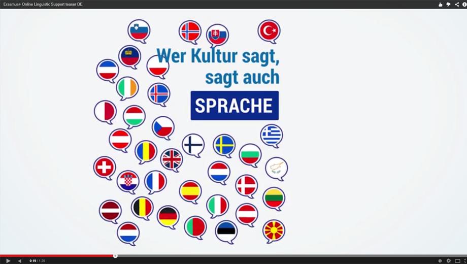 Online Linguistic Support (Image Screenshot)