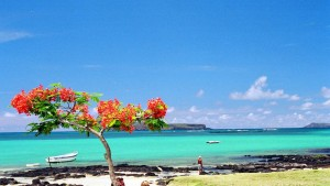 Mauritius (CC BY subzi73)